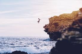 """""""An entrepreneur jumps off a cliff and builds a plane on the way down"""".  Bullshit!"""